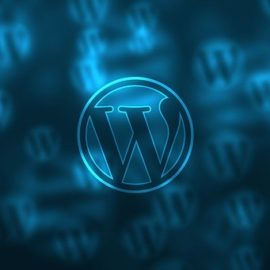 Wordpress teema